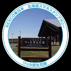 10_ワッカ原生花園
